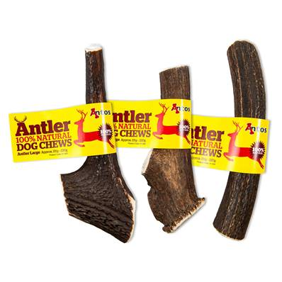ANTOS ANTLER - Natural Dog Chew - Large