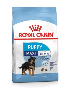 ROYAL CANIN - Croquette Chiot Junior Maxi - 15kg