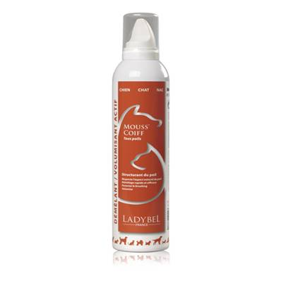 LADYBEL - Lady Mousse Coiffante - 300ml